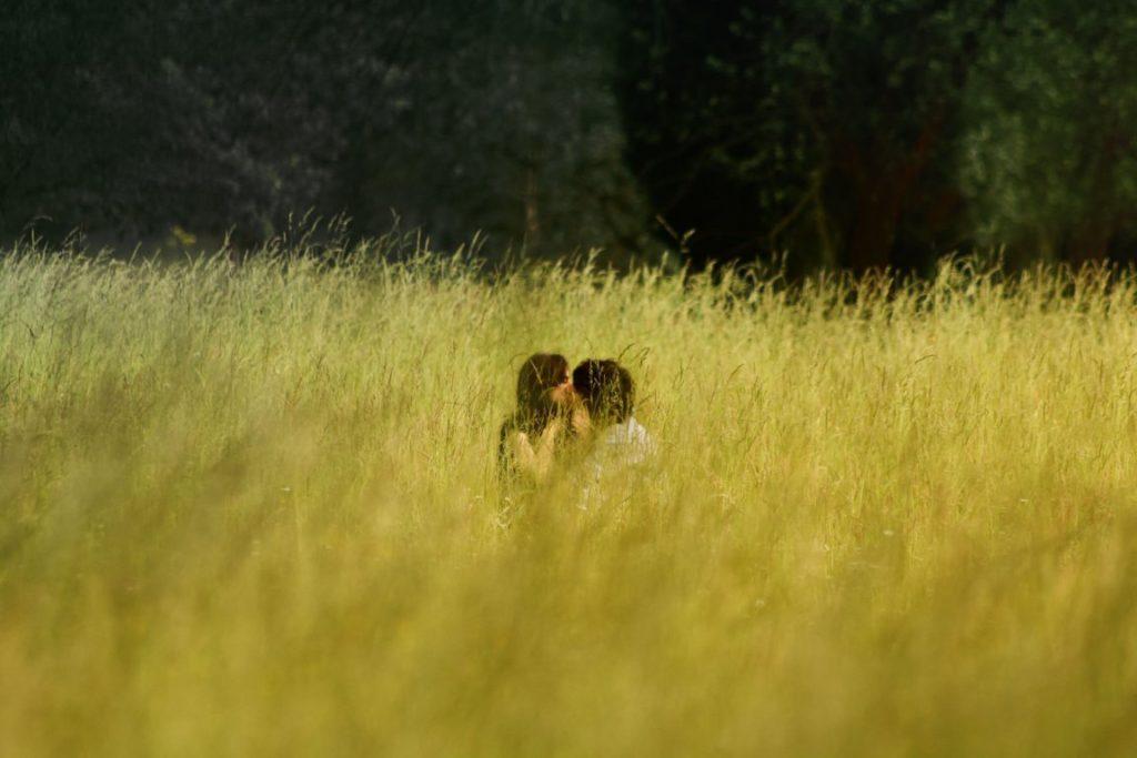 green love   amore   Pomili Demolizioni Speciali