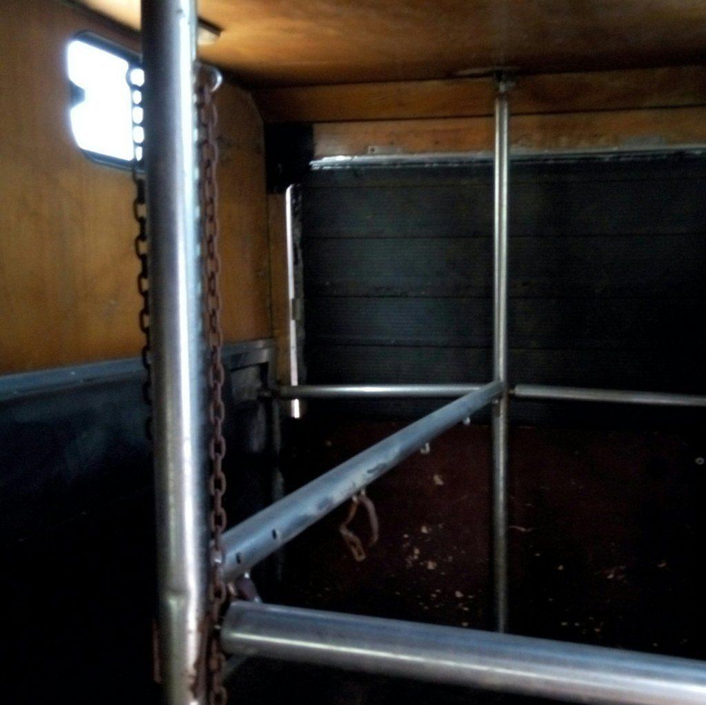 fiat Iveco usato trasporto cavalli (11)
