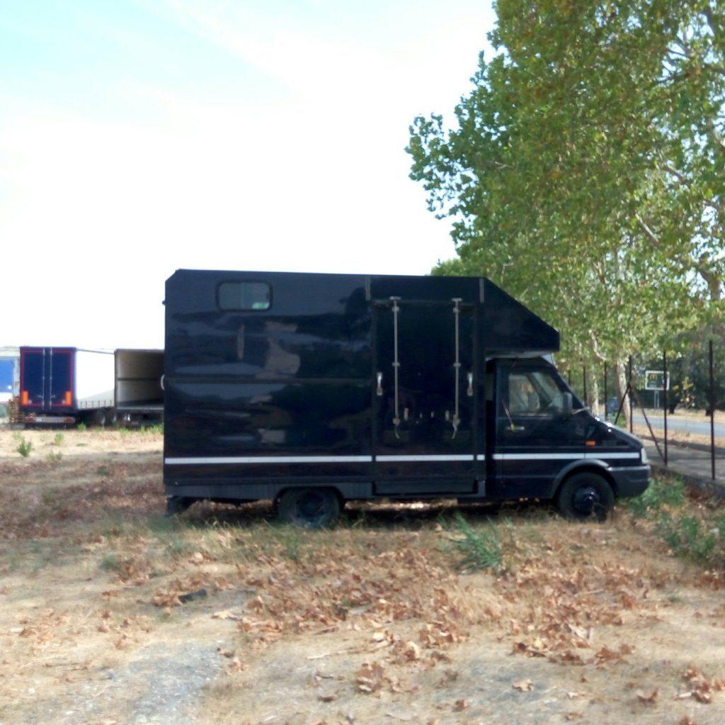 fiat Iveco usato trasporto cavalli (3)