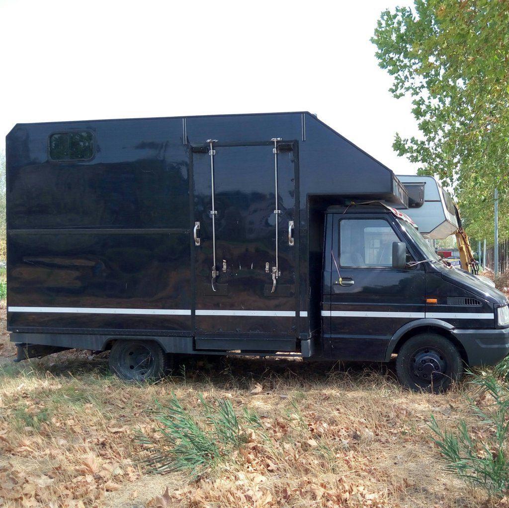 fiat Iveco usato trasporto cavalli (4)