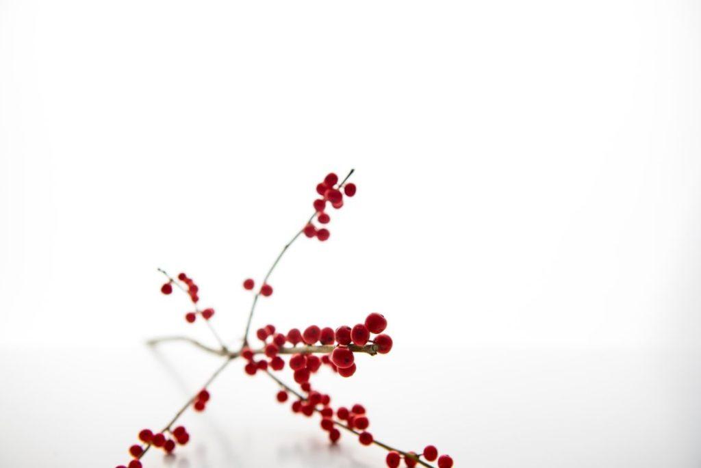 Natale | pausa invernale
