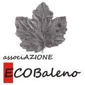 Ecobaleno APS