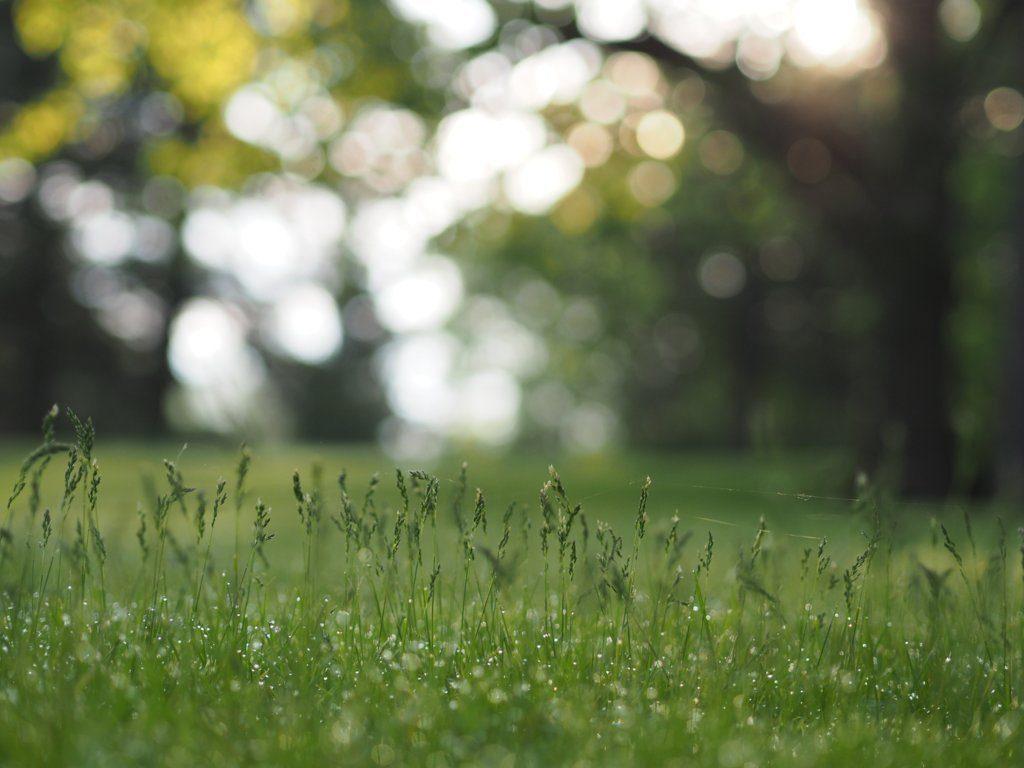 CSR - Bilancio Ambientale | Pomilids | Pomili Demolizioni Speciali srl