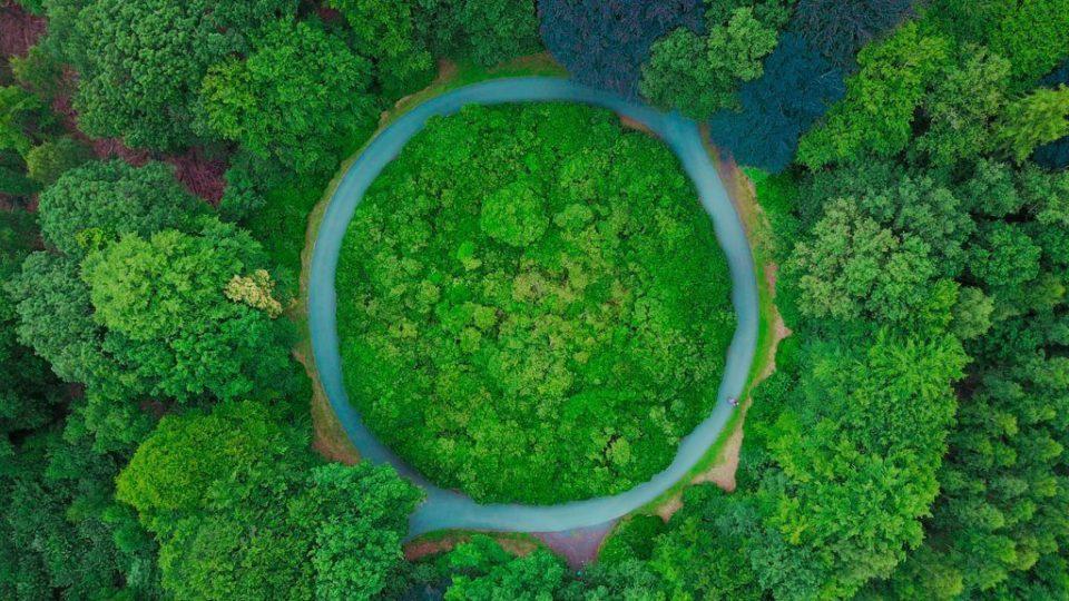 economia circolare green