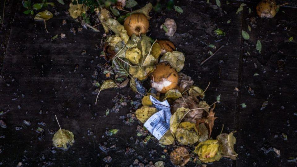 Pomilids – Contro lo spreco alimentare