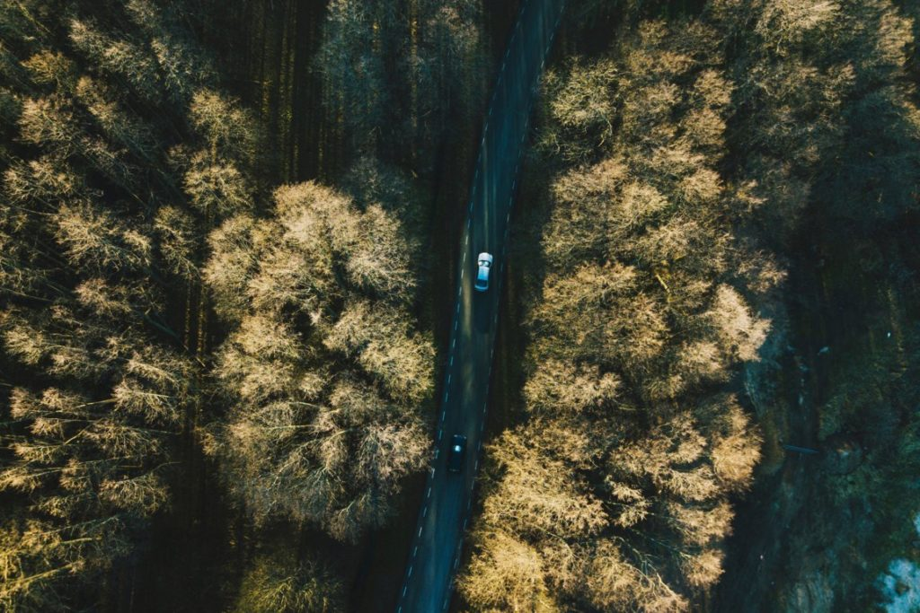 ambiente – green economy