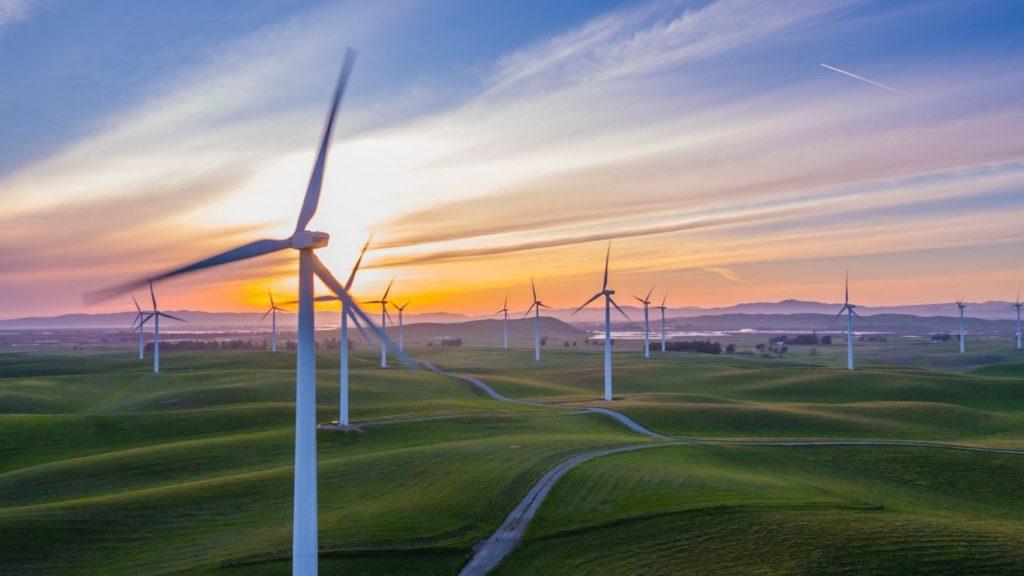 Ecofuturo: la nuova rivista per l'ambiente