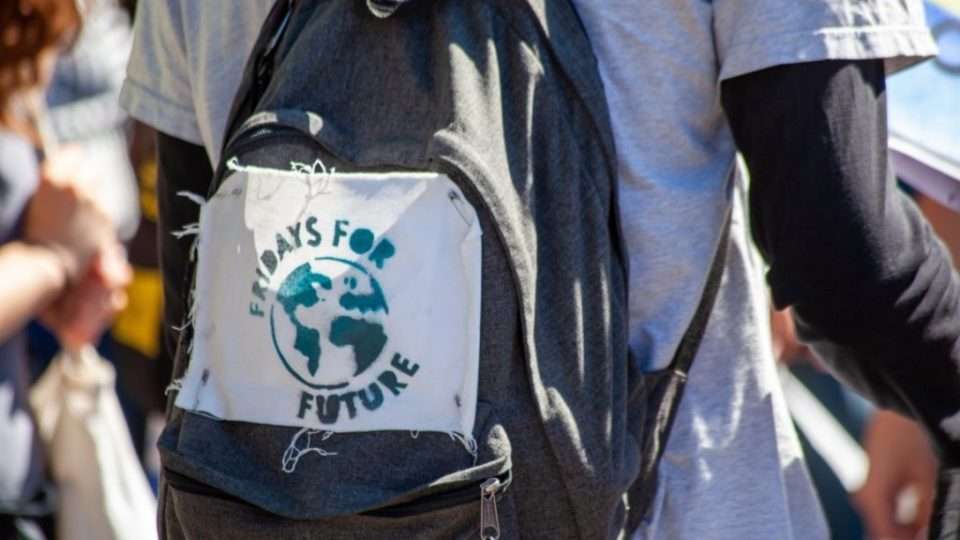 Fridays for Future – Pomilids