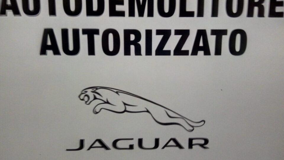 Pomili Demolizioni Speciali autorizzato (Jaguar)